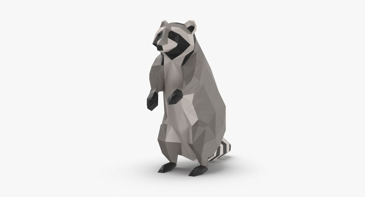 raccoon---upright 3D model