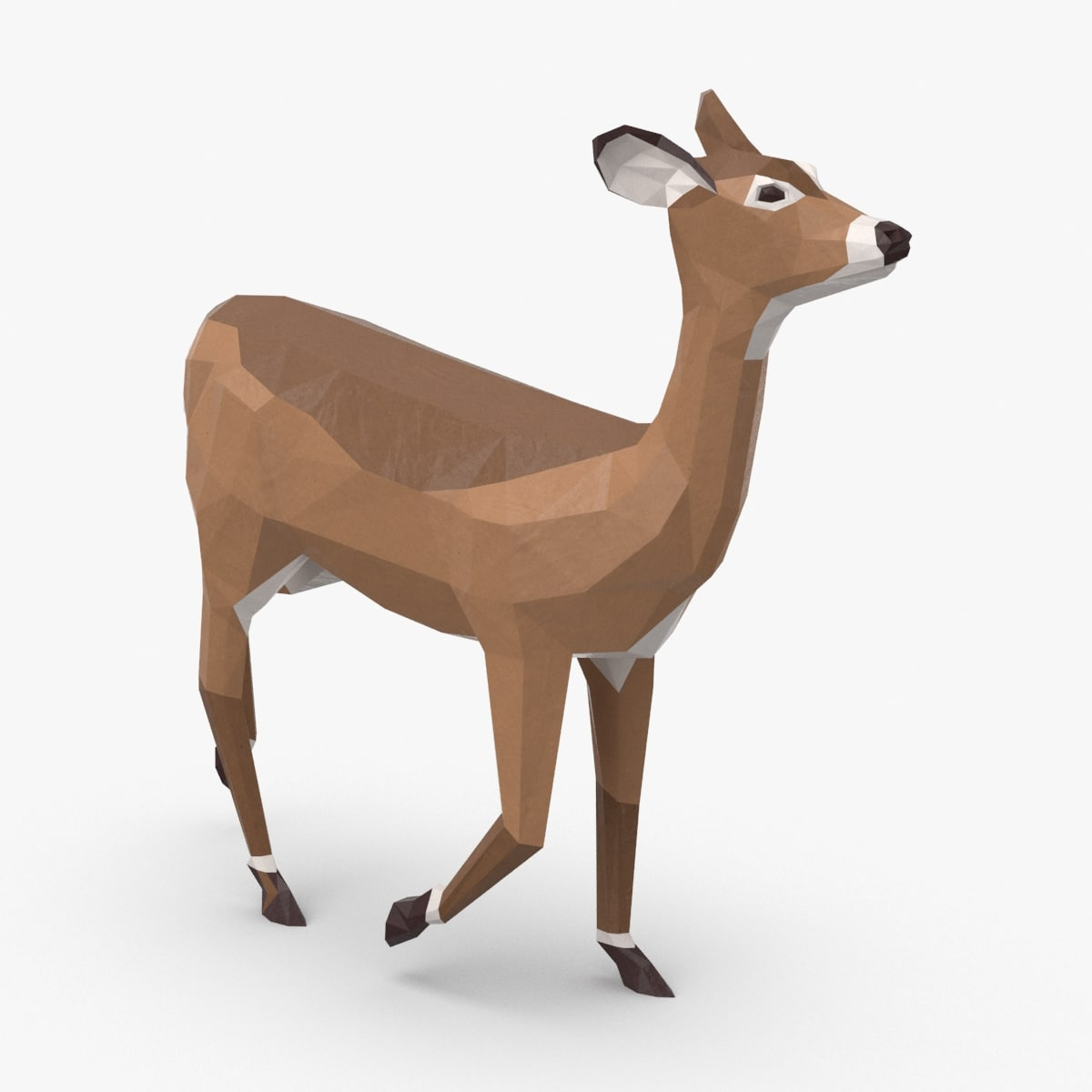 3D doe---walking