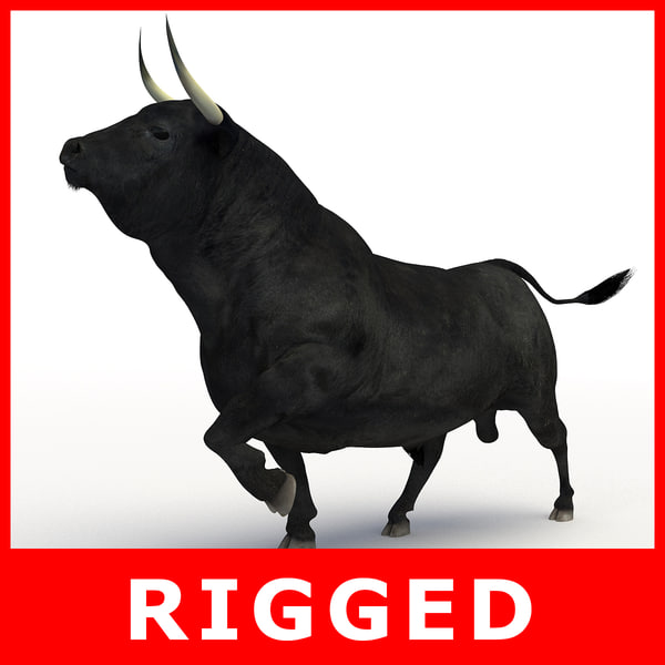 bull rigged 3D model