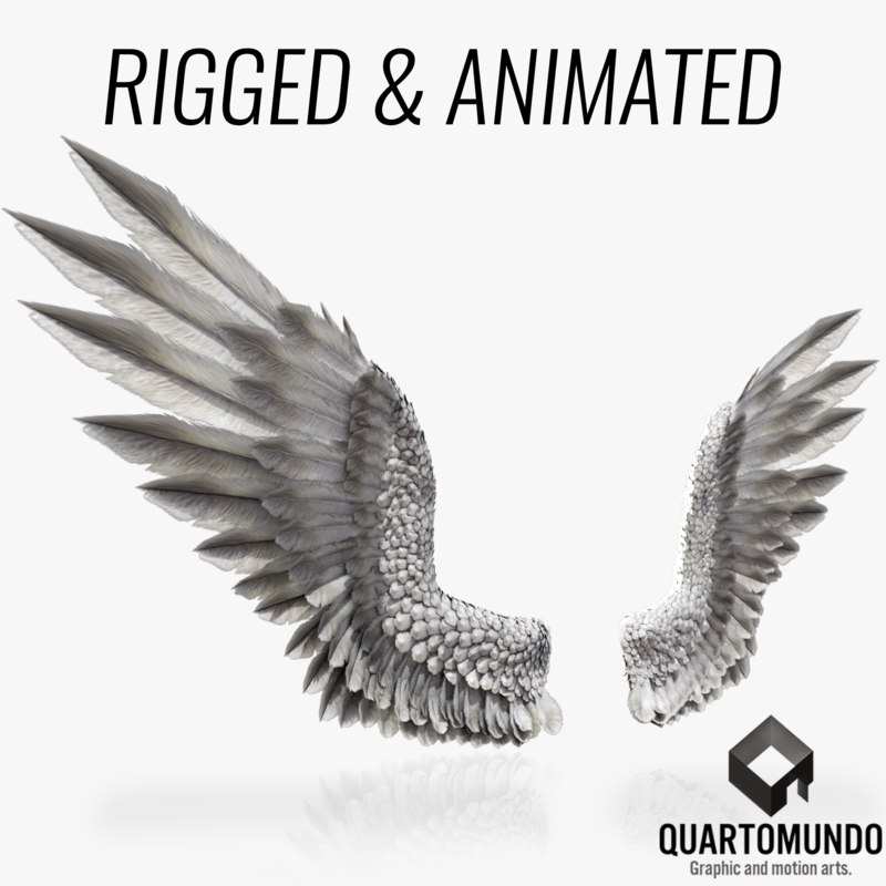 3D bird angel wings model