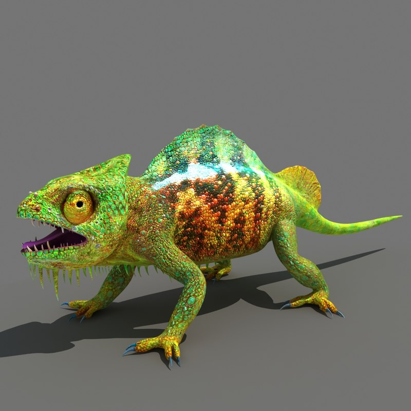 chameleon lizard animal 3D model