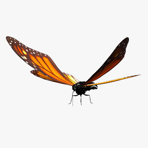 butterfly monarch rigged 3D model