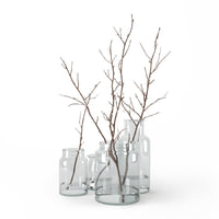 Branches in glass jars