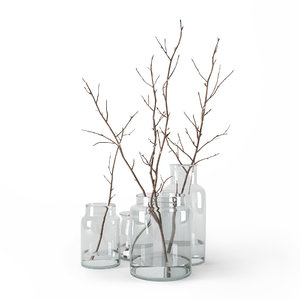 branches glass jars 3D model