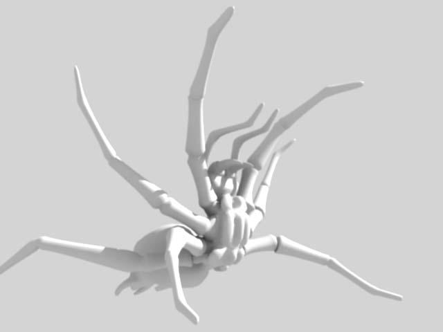 rearing spider 3D model