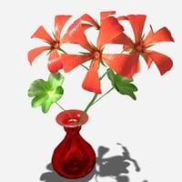 3D geranium flower model