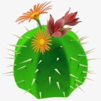 Cartoon Cactus with Flowers