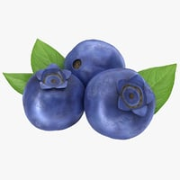 3D realistic blueberry model