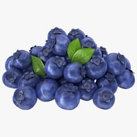 3D realistic blueberries pose 2