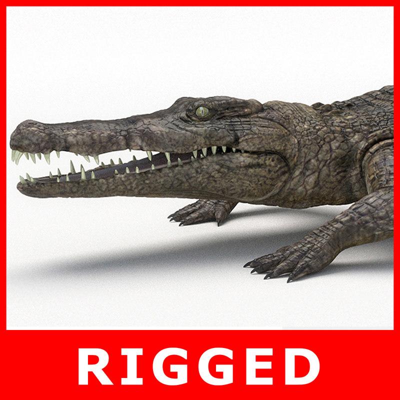 crocodile rigging model