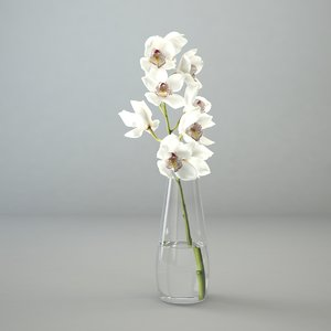 3D model orchid glass vase