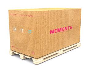 3D carton model