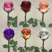 realistic rose flowers 3D model