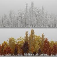 50 trees 3D model