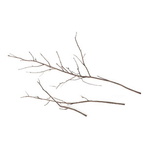 3D branches decoration