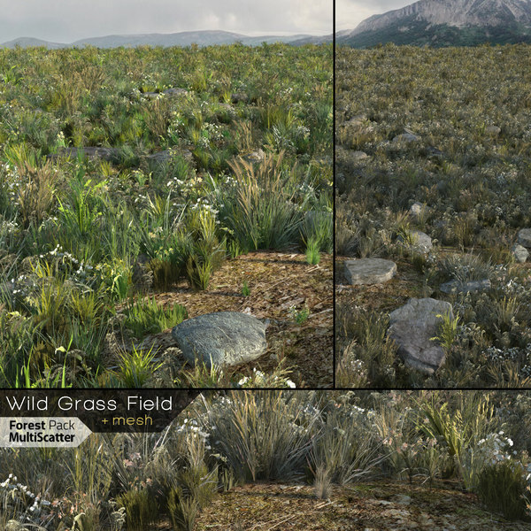 real-time wild grass field 3D model