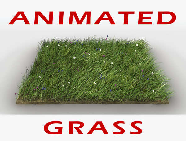 field grass flowers animation model