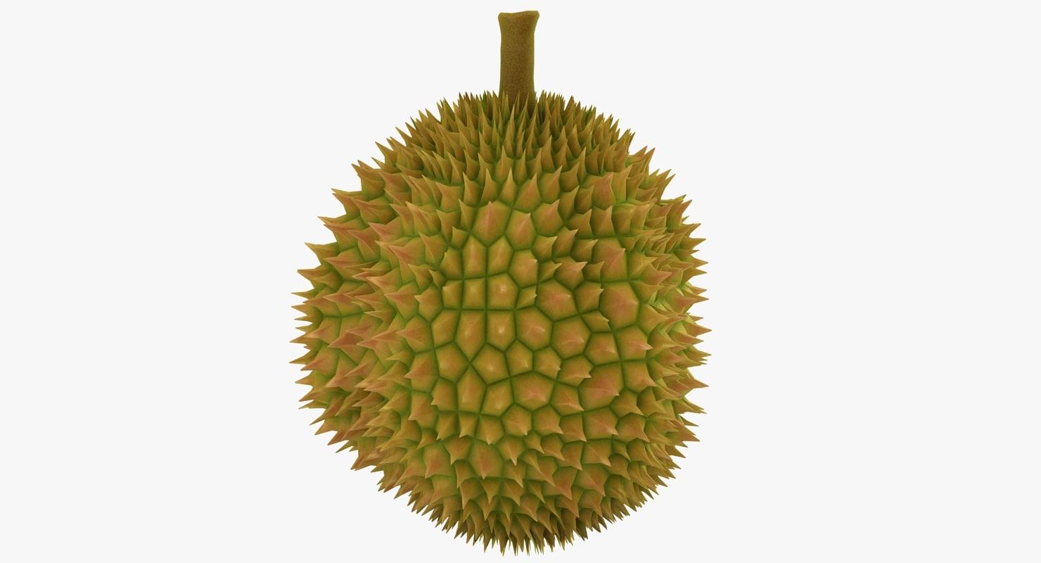 3D durian scanline