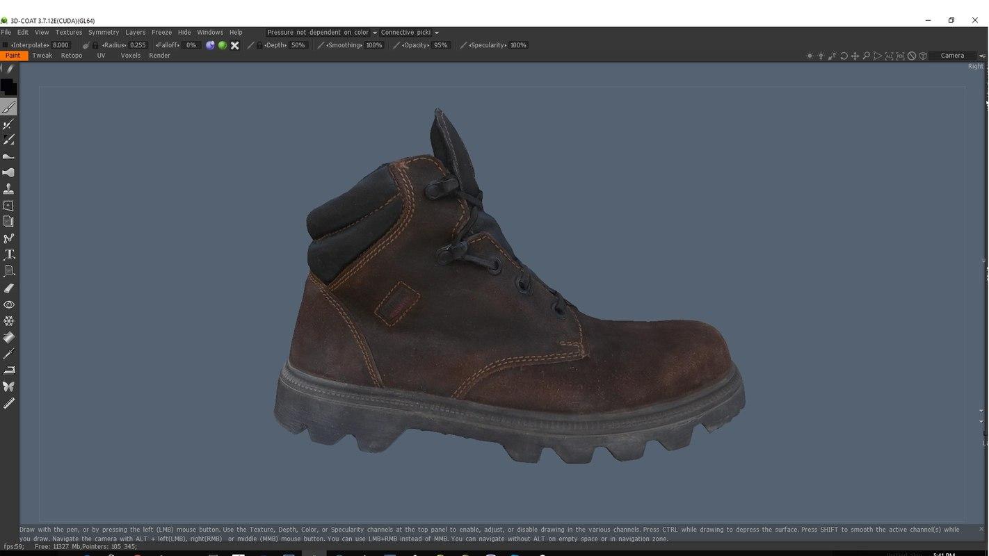 scanned boot model
