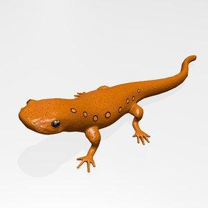 3D eastern newt