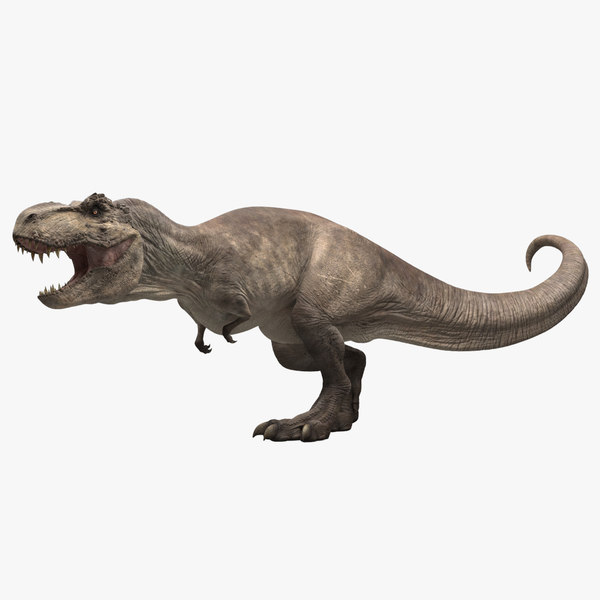 t-rex rigging animation 3D model