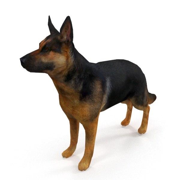 german shepherd 3D