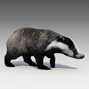 3D badger