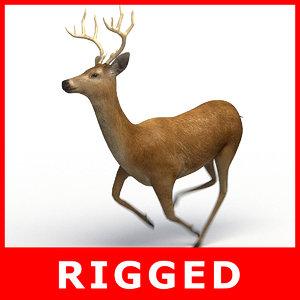 deer rigging 3D model