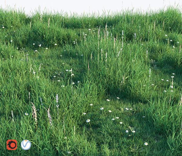 set grass 3D model