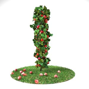 3D column apple tree grass
