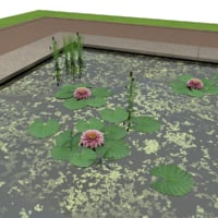 3D pond
