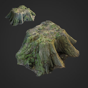 scanned nature tree stump 3D