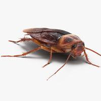 Cockroach Walking Pose