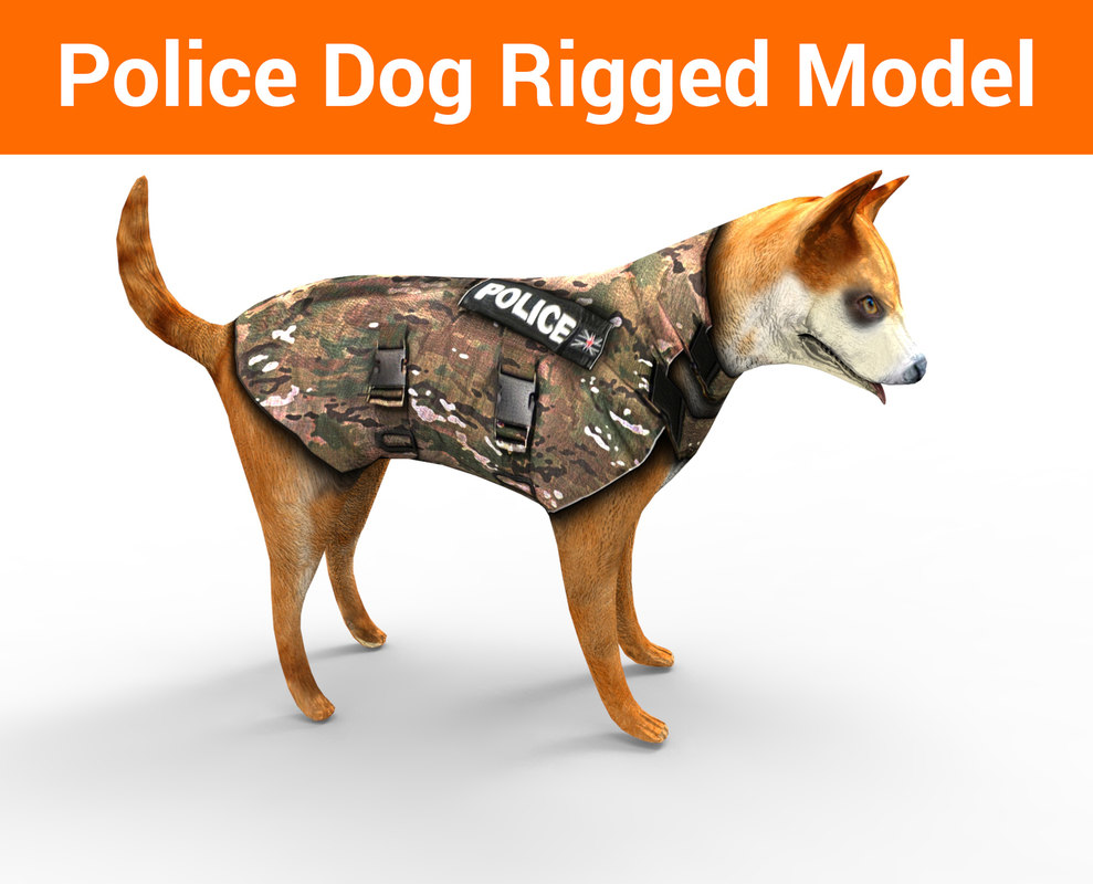 3D police german shepherd dog rigged