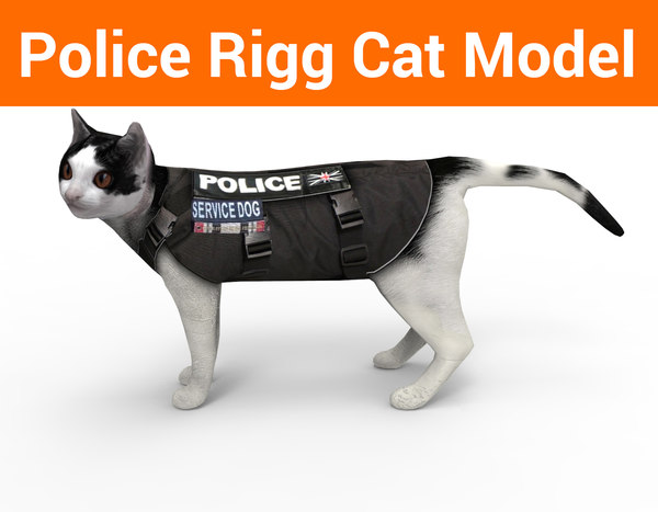 3D police cat rigged model