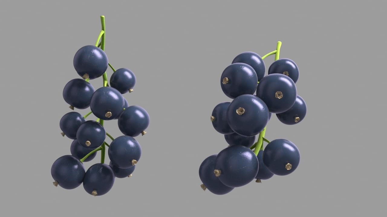 3D blackcurrant black model