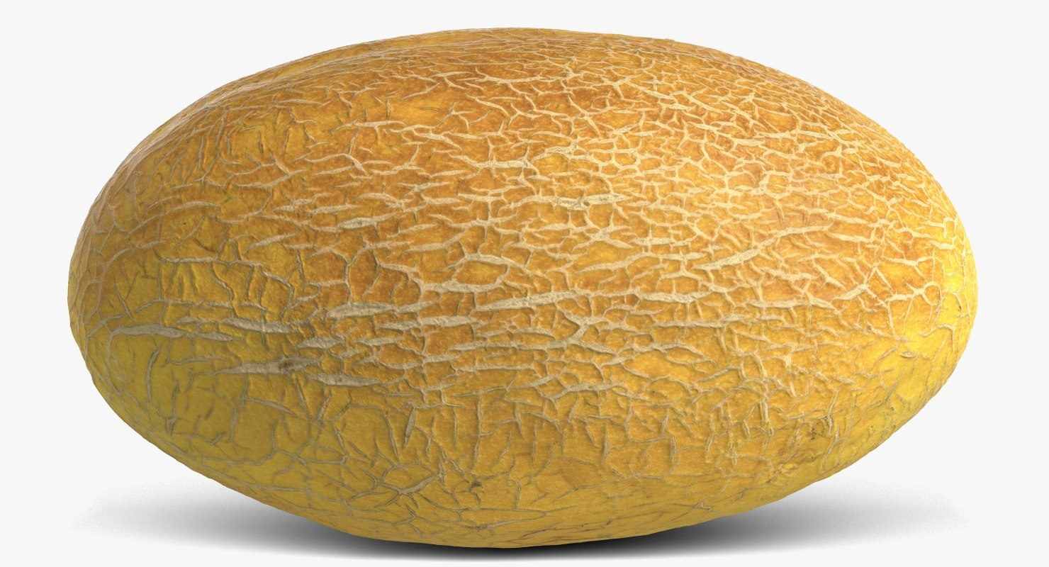 melon 4 3D