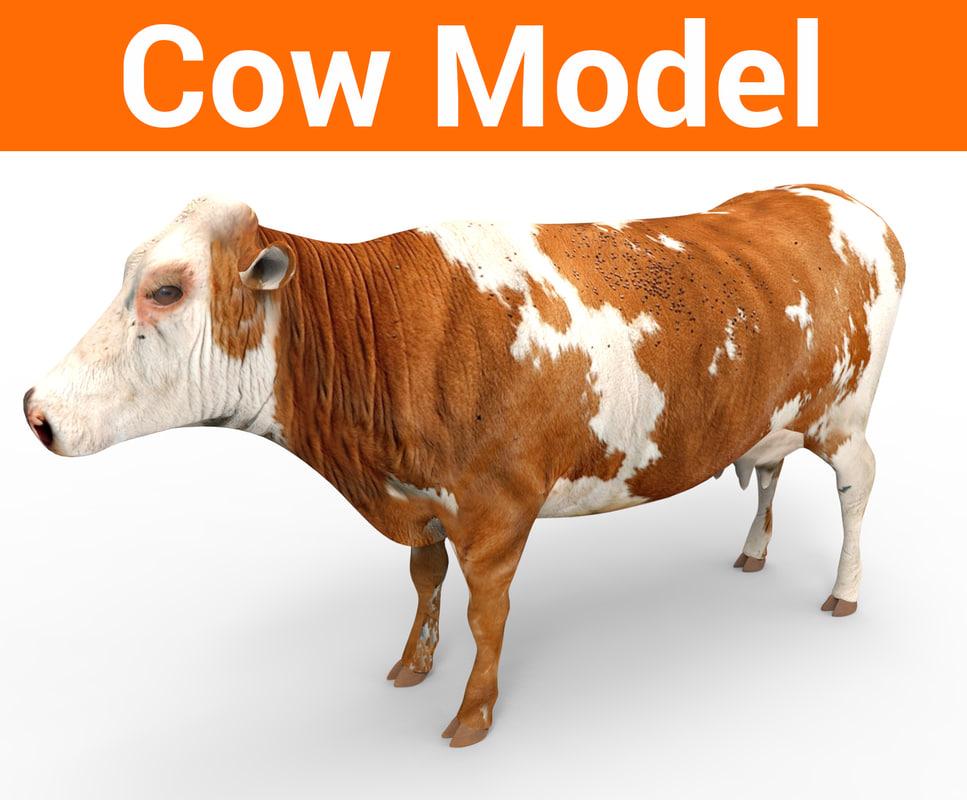 cow cattle 3D model