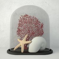 oval sea life glass dome model