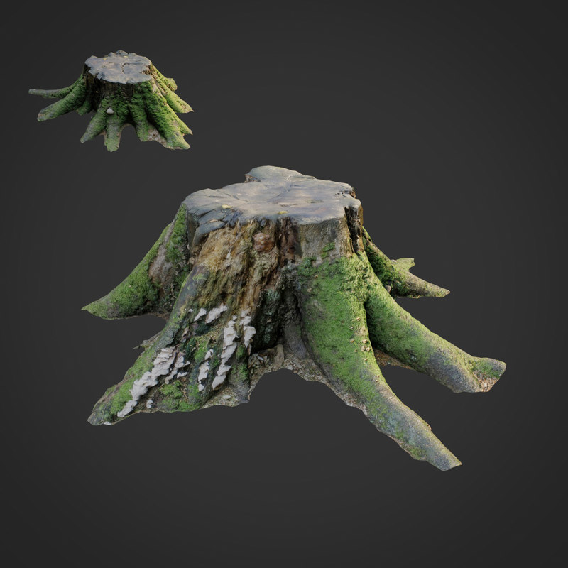 scanned nature tree stump 3D model
