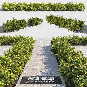 3D shrubs hedges multiscatter 2