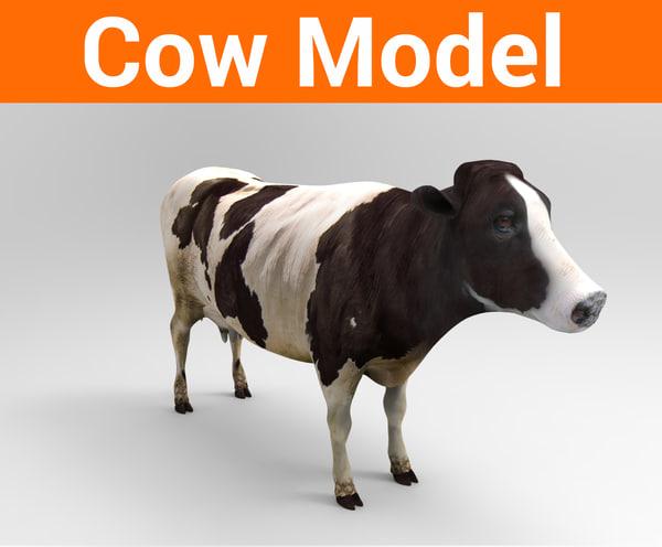 3D cow cattle