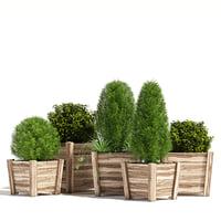 3D acacia hardwood planters model