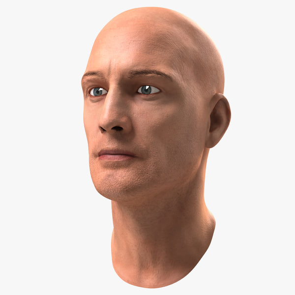 3D male head 6 rigged model