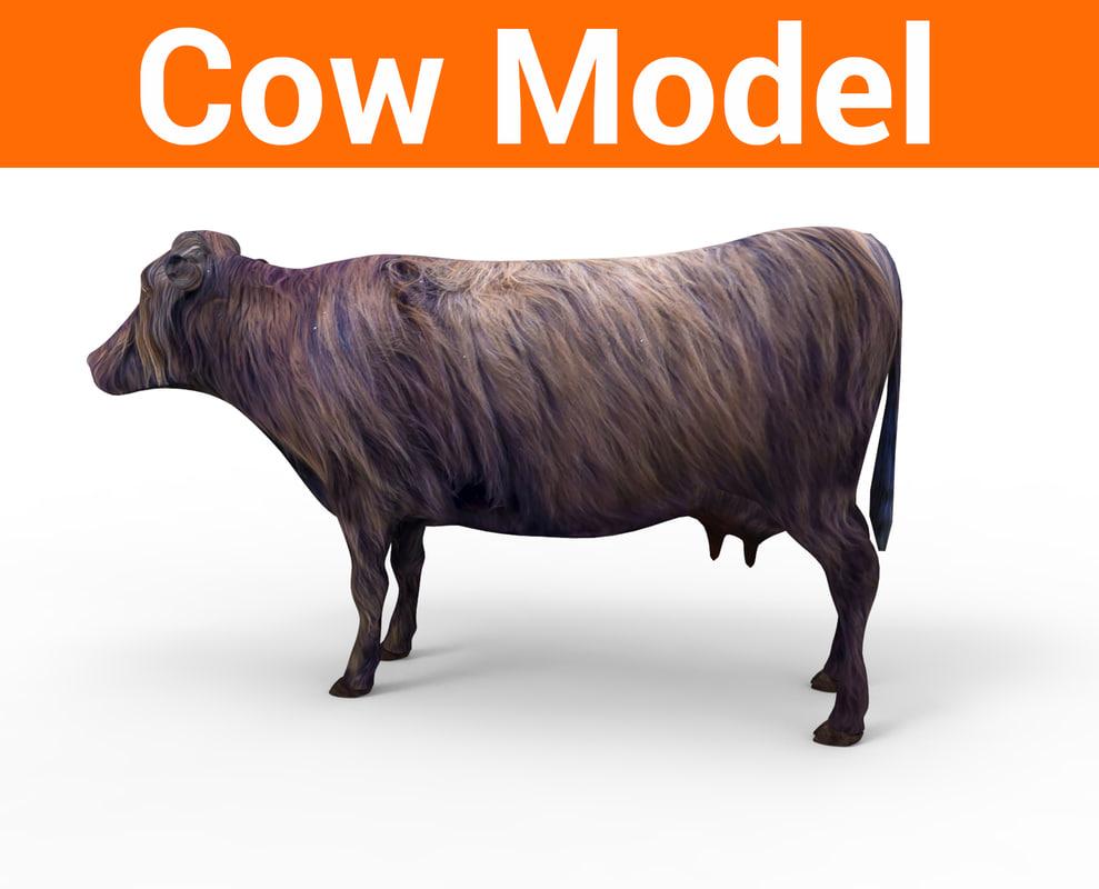 3D model cow cattle