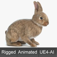 Animated Game Rabbit