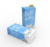 milk 1l 3D model
