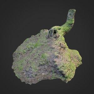 3D scanned nature forest stuff model
