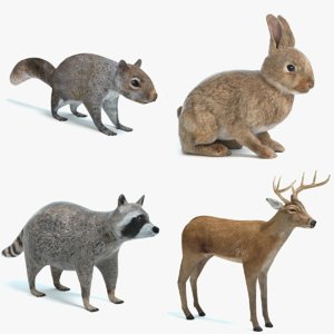 animal 1 3D