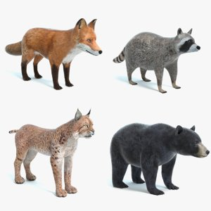 3D animal pbr black